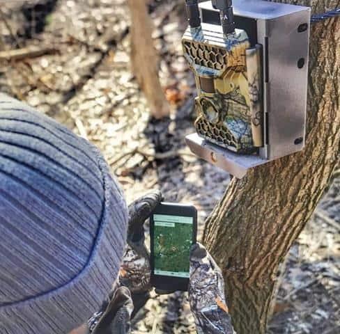 Wireless Trail Cameras