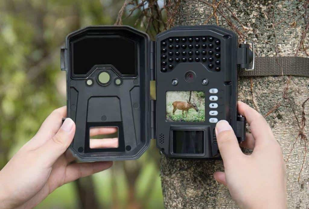Best Trail Camera 2020.5 Best Cheapest Trail Cameras Of 2020 For Outdoor