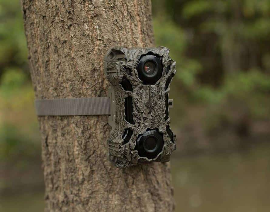 Best Trail Camera 2020.7 Best Wildgame Innovations Trail Camera Reviews For 2020