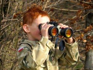 Best Binoculars for Wildlife