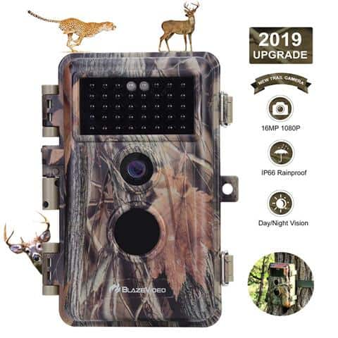 Best Trail Cameras Under $200