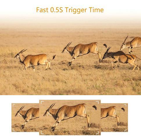 TOGUARD Trail Camera 14MP 1080P (Copy)