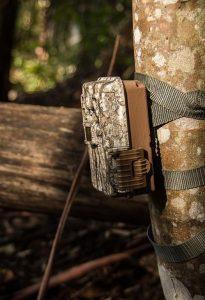 How To Aim A Trail Cam