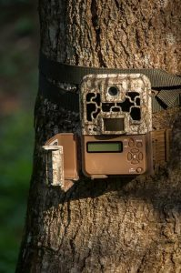 How To Aim Trail Camera