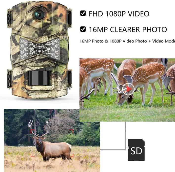 How To Program A Trail Cam